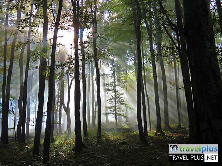 Двудневен преход / Trekking in Stara planina