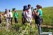 Ботанически тур / Botanical Tour in Stara planina