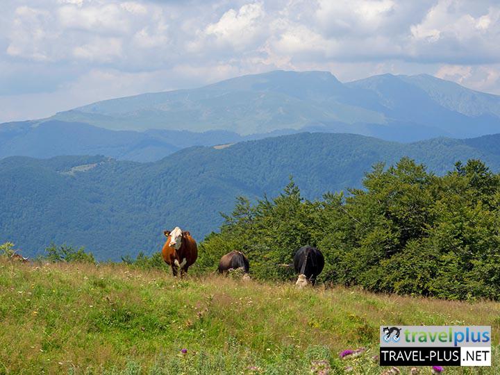 Пешеходни преходи в Стара планина - Усещане за Балкан